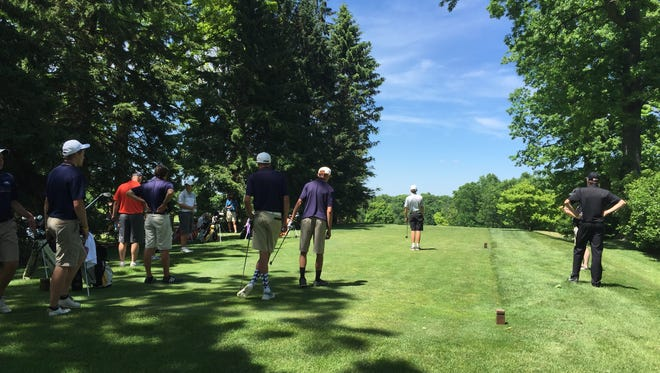 The Hartland golf team forced a sudden-death elimination with Brother Rice, but ultimately lost on Thursday at Dunham Hills Golf Club.