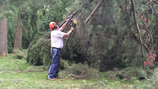 John Rusch works on cutting up a large pine tree that fell in his back yard.