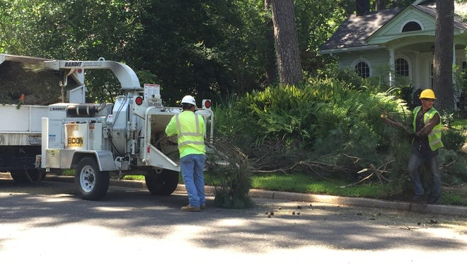 Workers from the ABC Professional Tree Services cut trees in the South Highlands neighborhood.