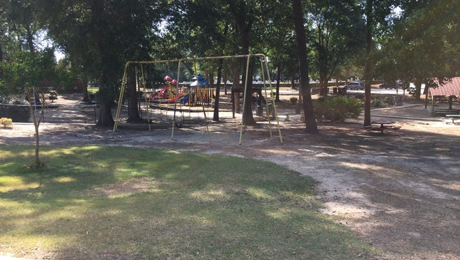 Leadership Simpsonville is raising funds to purchase sensory playground equipment to be installed at this portion of City Park adjacent to the current playground.