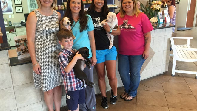 At Animal Care Veterinary Hospital are, from left, Hayley Clagg and son, Connor, who is holding Whitney Housing, veterinarian Kerrie Robinson, and Operation Education representatives Shelly Thorburn and founder Tiffany Galyon.