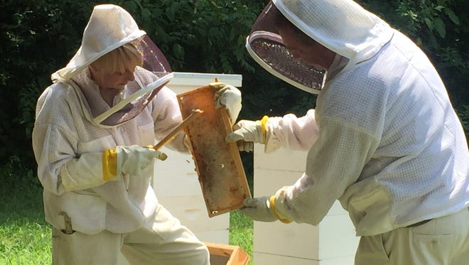 Cheryl Sanders, left, and Eddie Tomlinson harvest The Heritage's first batch of honey Friday in Brentwood.