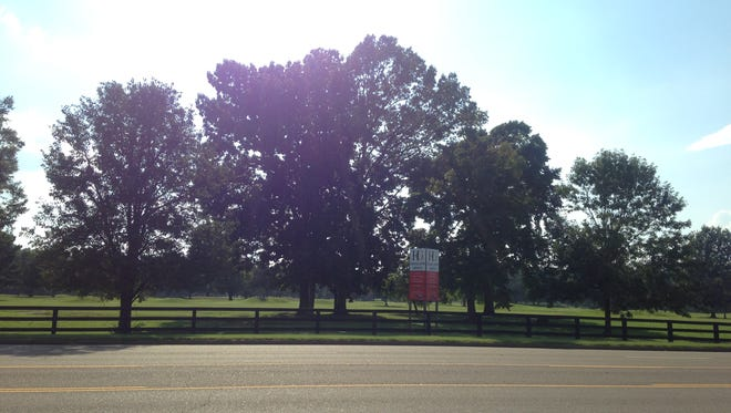 Jackson City Council will vote Tuesday for the first time on buying property at the former Highland Green golf course.