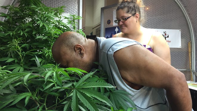 Billy Jean Clay and Roxanne Hunt look at marijuana plants at the Oregon State Fair in Salem on Aug. 26. Oregon voters legalized recreational marijuana in late 2014.