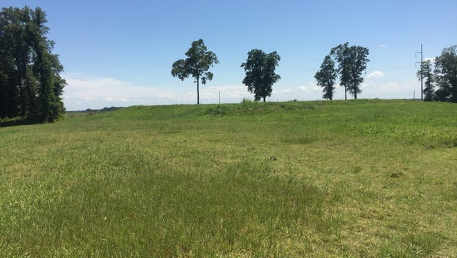 Along the walking path to discover mounds at Poverty Point World Heritage Site.