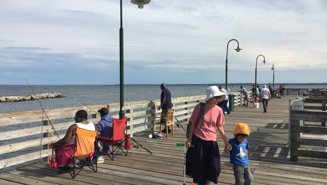 Police say a 70-year-old Rye man was seen throwing guns off the Playland boardwalk into the Long Island Sound. He told police he didn't want them anymore but didn't know how to get rid of them.