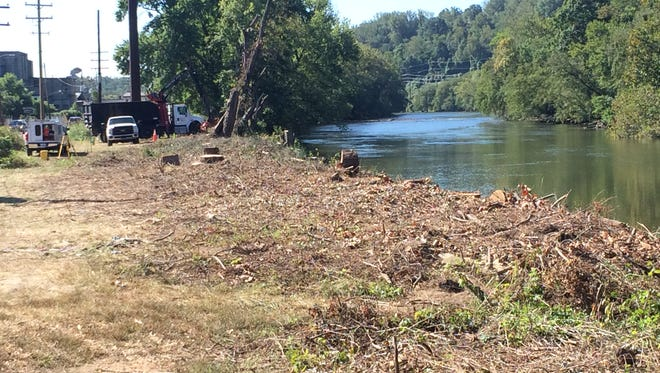 Duke Energy is removing a lot of trees along the French Broad River on Lyman Street to allow for relocation of power lines in the River Arts District.