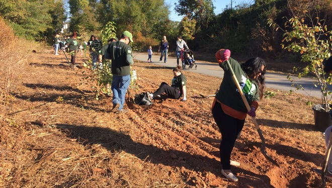 Volunteers with TD plant trees along the Swamp Rabbit Trail with the help of members of Trees Greenville.