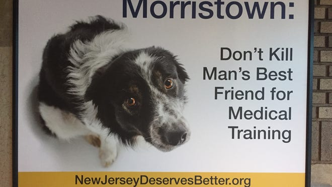 The Physician's Committee for Responsible Medicine put up this billboard criticizing what it claims are training programs at Morristown Medical Center that use live dogs for invasive physician training. The hospital denies the accusation.