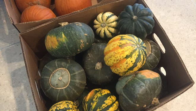 Acorn squash, also known as Des Moines squash, was sold at the Des Moines Indoor Farmers' Market on Friday, Nov. 18, 2016.