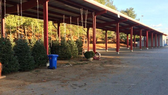 Many of the stalls that in years past were filled with Christmas tree vendors are empty this year at the WNC Farmers Market. Rents have gone up, but sellers also can now rent by the day, so many of them don't stay as long.