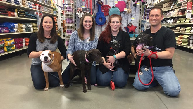 Puppy Bowl XIII participants from Rutherford County's Operation Education Animal Rescue include, from left, Daphne with Shelly Thorburn, Della with Tara Dembowczyk, Lucky with Megan Church, and Stevie with Justin Way.