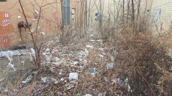 Trash accumulated in the bushes near the former Sears store at the defunct Medley Centre mall.