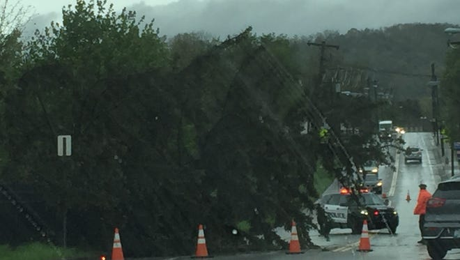 Winds and rain brought down a tree on Riverside Drive in Johnson City on Friday.