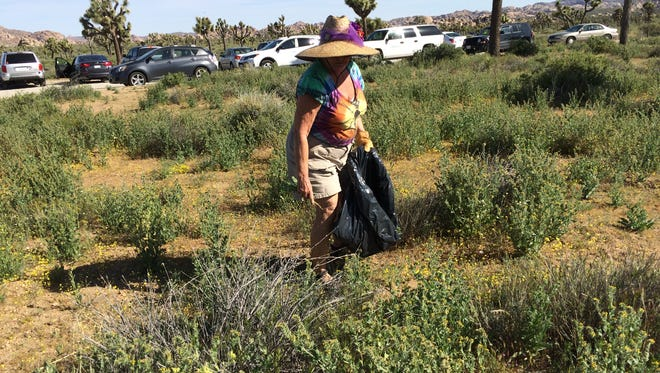 Ronie Banning, a Desert Edge resident and member of The Desert Horticultural Society of the Coachella Valley, is among the Weed Warriors volunteers at Joshua Tree National Park on April 22, 2017.