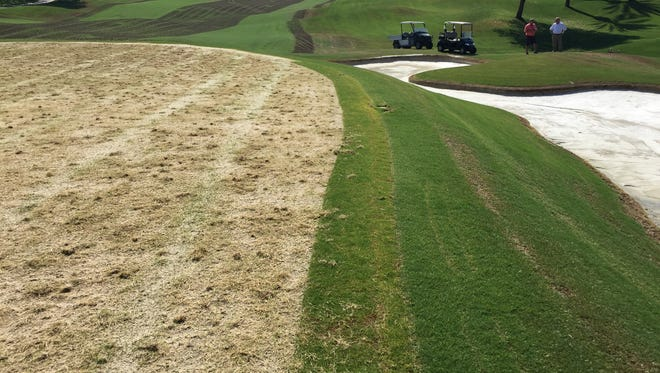 Work at Anadalusia Country Club in La Quinta this summer includes replacing greens with a new grass, re-sanding greenside bunkers and aerating fairways.