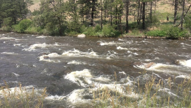 The area of the Poudre River near where a man was airlifted after falling in  while rafting on Tuesday, June 27, 2017.