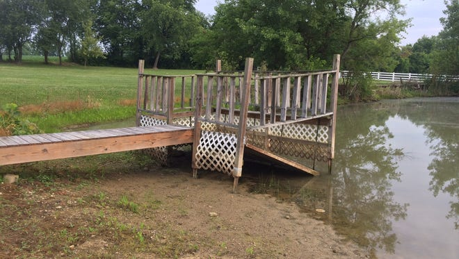 Problems such as failing docks, receding water levels, and shoreline vegetation can be easily identified and addressed.  Muddy water causes are harder to determine