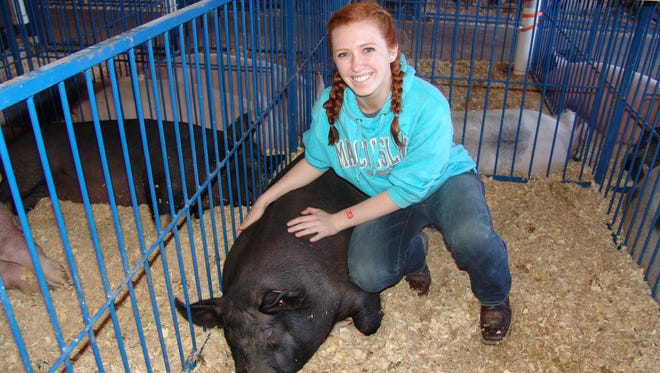Madison Miller poses with her gilt Daisy in the hog barn before the junior fair market hog show. A member of the Active Achievers 4-H club, she started out showing rabbits and doing cooking demonstrations,but loves the challenge of showing hogs.