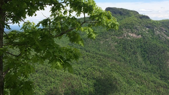 The Linville Gorge Wilderness in the Pisgah National Forest is a popular hiking area.