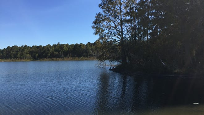 Lake Jackson, scene of many a gathering at the old Red and Sam's Fish Camp.