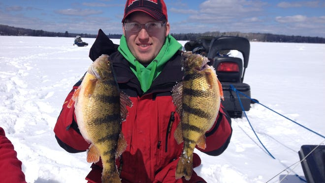 A couple of jumbo perch.