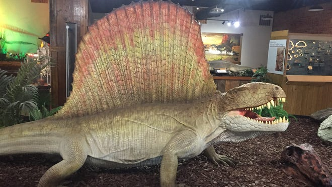 The Dimetrodon, as seen on display at Whiteside Museum in Seymour, Texas, was an ancient critter that dominated our area of Texoma.