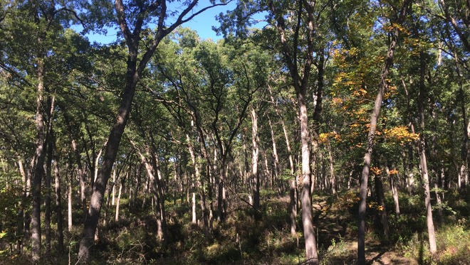 Sockum Ridge County Park near Washington is shown on Oct. 9, 2017.