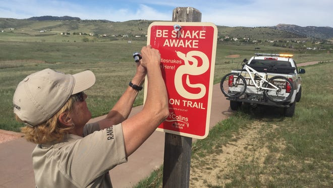 Rhonda Peckham, city of Fort Collins natural areas ranger, puts up a sign Wednesday warning trail users at the Cathy Fromme Prairie Natural Area to be aware of rattlesnakes, which have been seen on the trail.