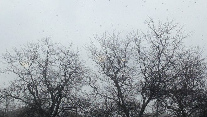 The snow begins to fall on Battle Creek Monday.