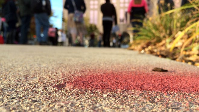 In this Oct. 11, 2014 photo paint left in Red Arrow Park by Dontre Hamilton's family marks the area where Officer Christopher Manney shot and killed Hamilton on April 30 in Milwaukee.
