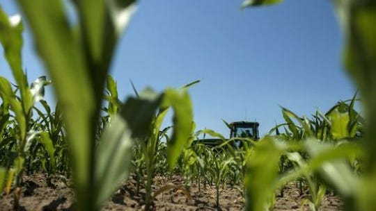 Missouri farmers fall on both sides of the Right to Farm issue.