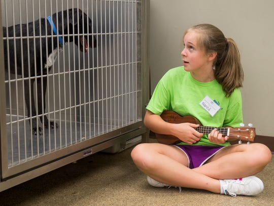 10-year-old volunteer Nancy Tant sits on the floor and strums on her ukulele as she sings to a dog named Sheldon currently at the Humane Society of the Tennessee Valley on Monday, July 2, 2018.