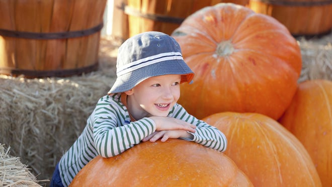 This weekend's list includes pumpkin patches and fall photo ops.