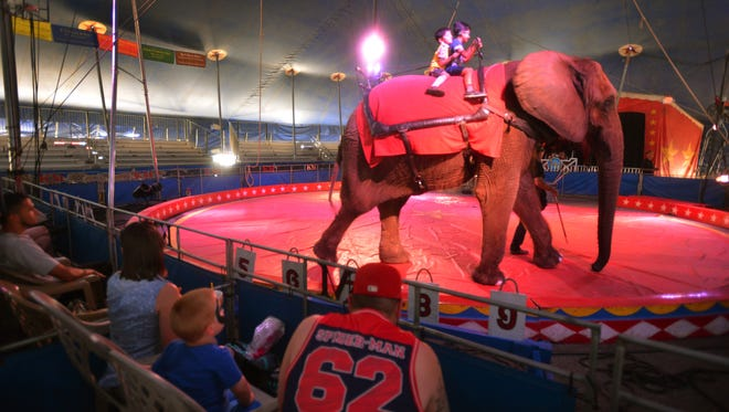 Passaic County has moved to ban travelling shows that feature wild or exotic animals.