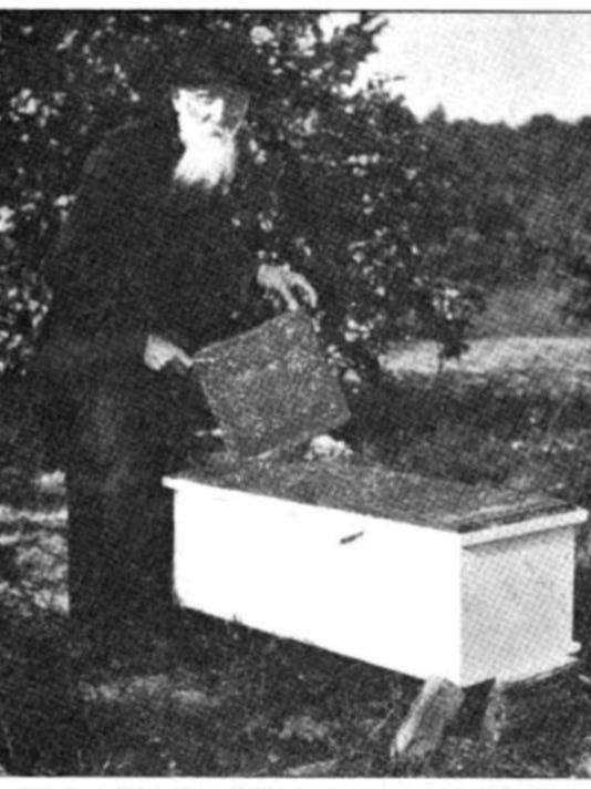 0906-YNMC-HV-Poppleton-with-Stuart-hives-1913.JPG