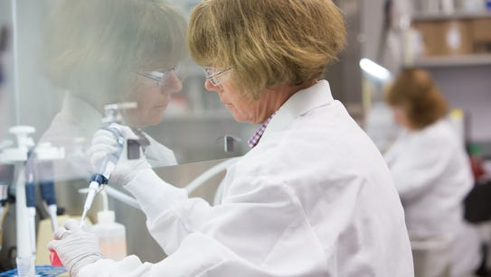 Research expert, Karen Gallagher, harvests human cells