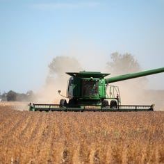 Report: New records for corn and soybean yields unveiled