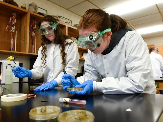 Grace Parock, left, and Lindsey Beavers complete a lab assignment during a Project Lead the Way class Thursday, April 27, at Paynesville High School.