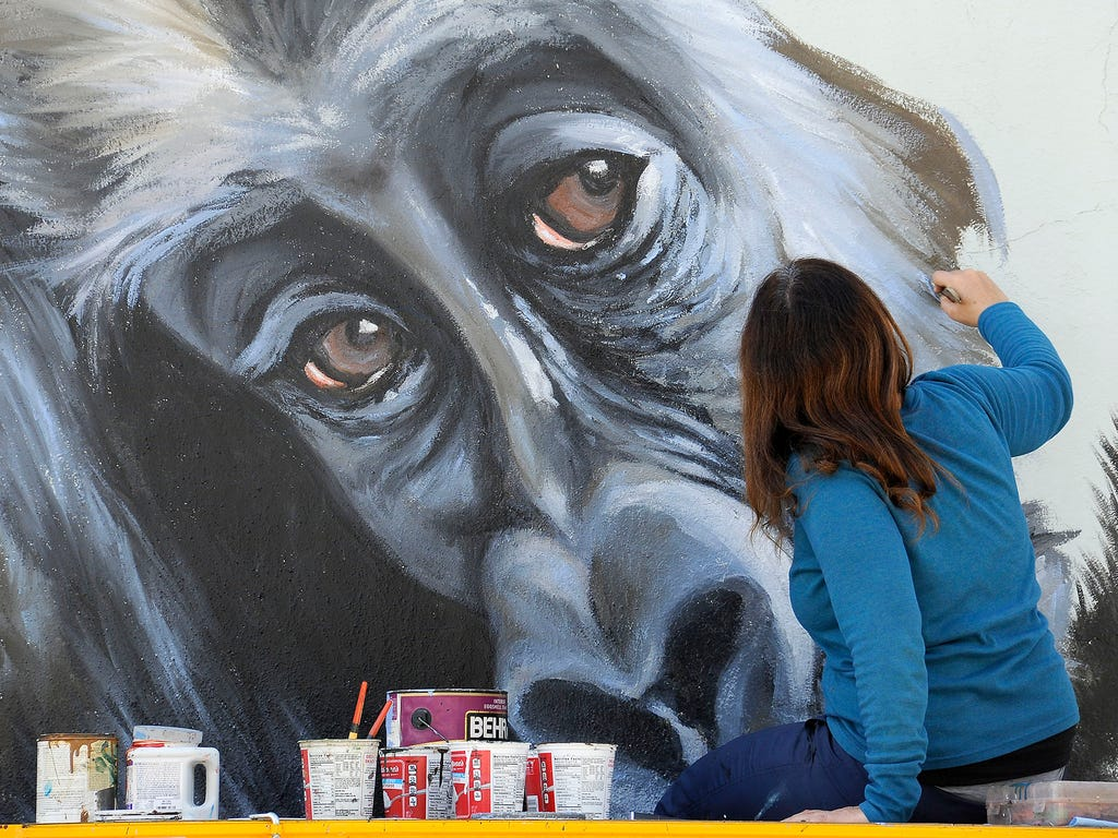 Anat Ronen works on a mural featuring gorillas on Feb. 11 in Houston. The mural is one of five commissioned by the Houston Zoo to celebrate the coming arrival of seven western lowland gorillas.