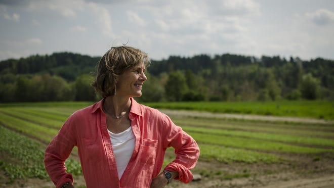 Democratic gubernatorial candidate Sue Minter on May 27 at Pete's Greens farm in Craftsbury.