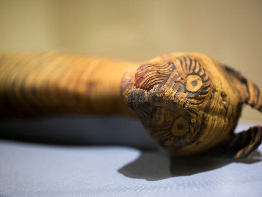 "A cat mummy, is displayed as part of the exhibit ""Soulful Creatures: Animal Mummies in Ancient Egypt,"" at the Orange County's Bowers Museum in Santa Ana, California on March 20, 2014."
