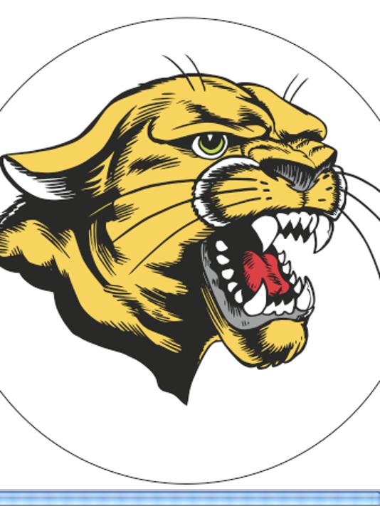 schalick cougar