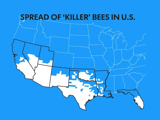Africanized honey bees continue to spread northward