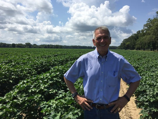 Congressman Ralph Abraham, R-Alto, stands in the middle of his family's cotton field in Richland Parish in 2017.