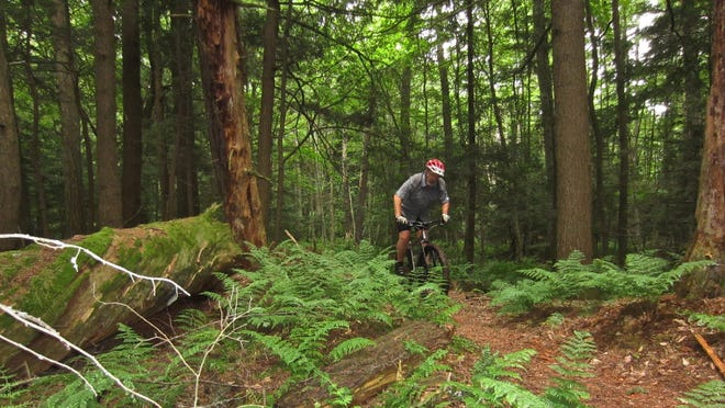 Steve Meurett rides the Hidden Lakes trail in the Chequamegon-Nicolet National Forest near Eagle River in July 2014.