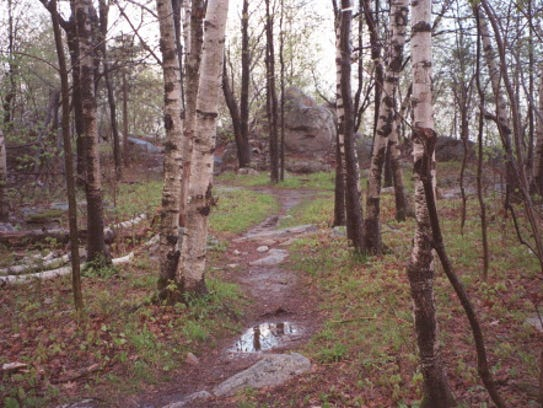 RIB MOUNTAIN: HIKING TRAILS; TRAVEL 5/23/99 SLUG: MCCANN23JP
