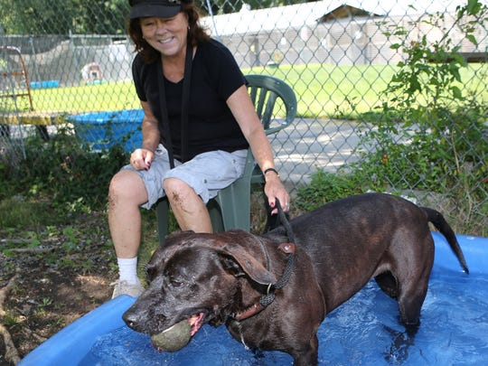 Volunteer Jean Carlson takes a water break with Mocha,