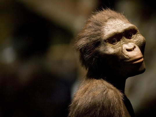 Lucy died 3.2m years ago