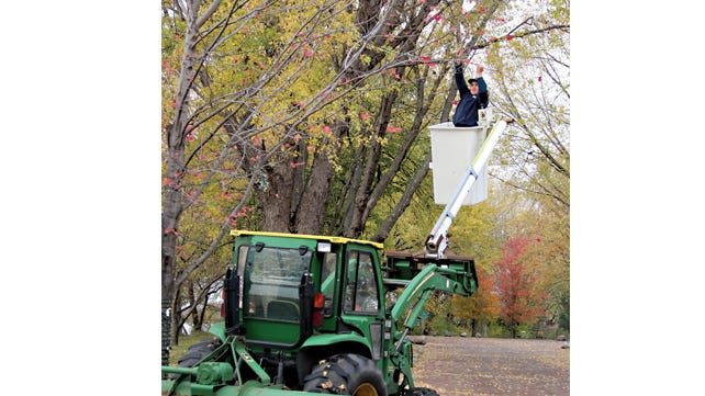 Brayden Suess helped string lights on tree branches in Sportsmen's Park Saturday morning. Cory Heiderscheidt expertly operated the tractor and bucket to maneuver Brayden around the trees.